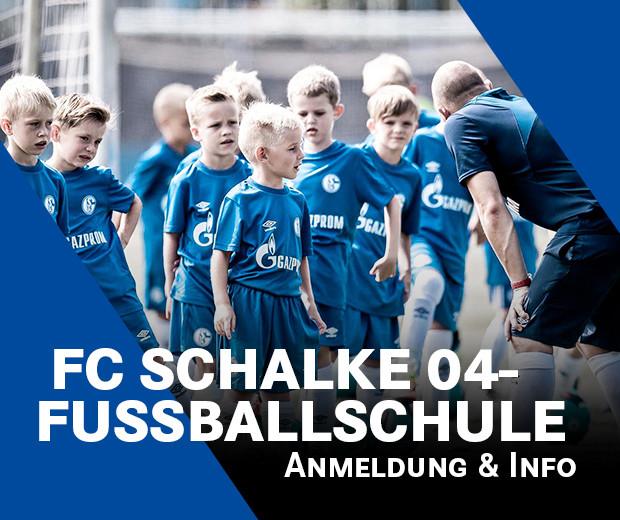 Naldo FC Schalke 04 2016//17 AK Druck