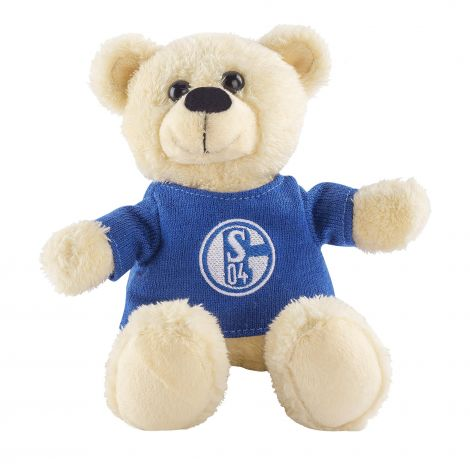 Plüsch Teddy